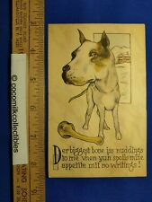 Postcard 1910s Pit Bull Dog Or American Stafford Terrier With Large Bone Color