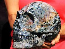 """10.6 lb 8"""" Ocean Jasper Skull! SK203"""