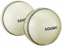 Cricket Sports Play Leather Cricket Ball, 2 Pieces, White