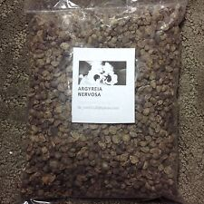 Fresh! 100+Hawaiian Baby Woodrose Seeds Hbwr (Argyreia Nervosa) Hawaii StrainLsa