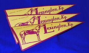 "vintage travel luggage decal   race horse  MAN O WAR , Lexington Kentucky , ""3"""