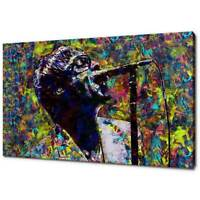 OASIS LIAM GALLAGHER CANVAS PICTURE PRINT COLOURFUL WALL ART FREE FAST DELIVERY