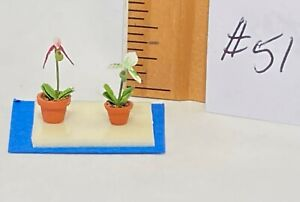 Dollhouse Miniature 1/4 scale 2 lady slipper orchids #51