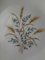 "Canonsburg Pottery Sky Line two 9.5"" Dinner Plates Wheat Ceramic Vintage 1950's"