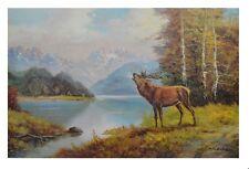 Kuboth Hirsch am See Poster Kunstdruck Bild 54,3x84,5cm - Kostenloser Versand