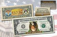 INVERTED 2-Sided COLORIZED Legal Tender $1 U.S. Bill Colorized Upside Down Error