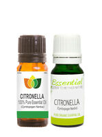 Citronella Pure Essential Oil Natural Authentic Cymbopogan Nardus Aromatherapy