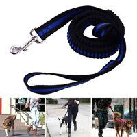 Puppy Pet Dog Retractable Elastic Nylon Training Lead Leash Strap Small Large
