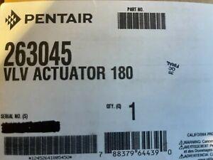 Pentair 263045 180 Degree 3-Port Pool And Spa Valve Actuator