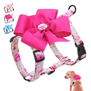 Nylon Adjustable Dog Harness Flower Decoration Soft Vest for Small Medium Dogs