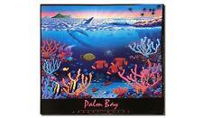 Rainbow Reef by Robert McCoy (Poster)