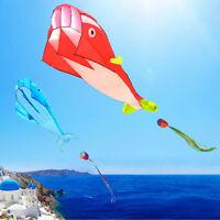 Hengda Kite 3d Kite HUGE Frameless Soft Parafoil Giant Blue Dolphin Breeze Kite