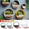 Iron Wall Hanging Basket Vase Flower Pot Round Planter Bonsai Fr Home Art