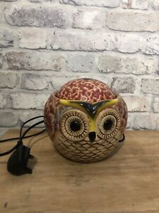 Owl Indoor  Water Fountain Fully Working Very Relaxing