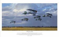 More details for greentails albatros dva fighters of jasta 5 aces ww1 print artist signed ltd ed