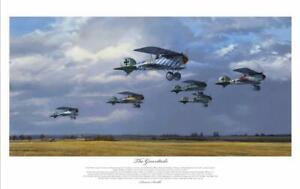 GREENTAILS Albatros DVa fighters of Jasta 5 ACES WW1 PRINT ARTIST SIGNED LTD ED