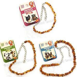 Bernsteinkette Hund Katze Bernstein roh Hundekette Halsband raw amber 22 - 68 cm