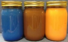 3 Pack - 16 oz Soy Candles Winter Collection Hand Poured