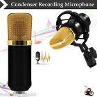 BM700 Condenser Microphone Sound Speech Studio Recording Mic W/Black Shock Mount