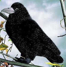kösener 4000 - saatkrähe Ilse 29 cm animal à câliner en Peluche