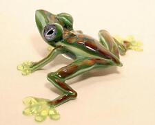 Glass Tree Frog by Tim Lindemann