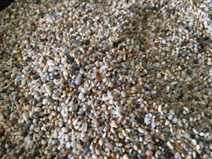 Fish Tank Aquarium Natural Pea Gravel Stones Substrate 3/4mm fine Top quality