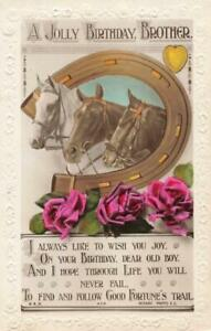 BIRTHDAY BROTHER - THREE HORSES HEADS IN A HORSESHOE VINTAGE REAL PHOTO POSTCARD