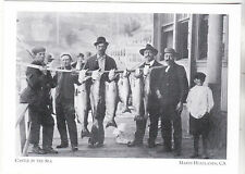 """Fish Catch @ Castle By Sea"" -1908-  Marin Headlands  {Postcard} (#247)"