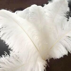 pack Large Ostrich Feathers For Wedding Party Costume Decoration 25-30cm 10Pc