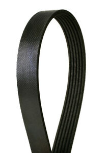 Serpentine Belt-Multi-V Continental Elite 4060625