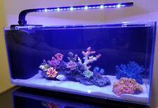 10 Gallon Rimless Desktop Aquarium by JBJ