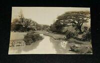 RPPC AZO Real Photo Hawaii Stream Photo Post Card 1910's Antique HI