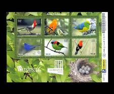 Birds Brazilian 2009 Animals Fauna Eggs - Michel BL144, StGib MS3596, RHM B-153
