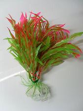 plante haute