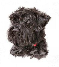 MINI BLACK SCHNAUZER.         3 Blank Dog greeting cards by Christine Groves