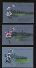 Greetings Birthday Wishes HAND PAINTED flower & beach/sea SET 6 PPCs c1920/30s?