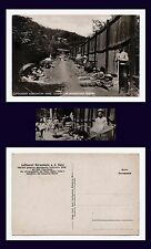 GERMANY GAY RELATED NAKED MEN NATUROPATHY SPA SOBERNHEIM REAL PHOTO CIRCA 1910