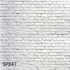 Brick 10'x10' Indoor Computer-painted Scenic Photo Background Backdrop SP847B881