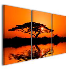 QUADRI MODERNI BEAUTIFUL AFRICAN SUNRISE PAESAGGI E TRAMONTI AFRICANI ETNICO