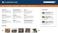 Best Classified Web Site Craigslist Clone Website 1st year hosting