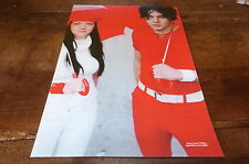WHITE STRIPES - Mini poster couleurs !!!!!!!!!