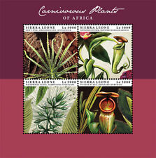 Sierra Leone- Carnivorous Plants of Africa Stamp - Sheet of 4 MNH