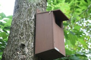 Little Owl Nest Box | Bird House Wooden Garden Wall Tree Mounted Owls RSBP Spec