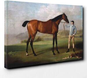 George Stubbs Molly Long Legs Horse with her Jockey Framed Canvas Print Wall Art