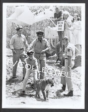 8x10 Photo~ ZEBRA IN THE KITCHEN ~1965 ~Jay North ~Martin Milner ~Karen Green