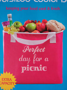 Cooler Bag 21 Litre Insulated Cool Bag Holidays Picnic Beach Festival Xtra Large