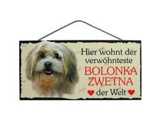 Türschild Bolonka Zwetna, Tierschild Hund aus Holz, Holzschild, Herstellung D