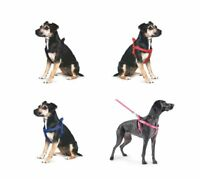 Dog Puppy HarnessAncol Nylon Padded  Reflective Stitching