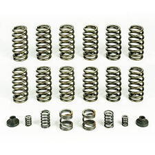 3000/4000 RPM Governor Spring kit & 12 60# VALVE SPRINGS For 94-98 Dodge Cummins