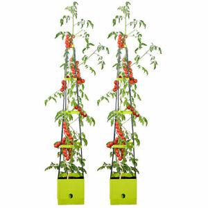 Pflanzturm: 2er-Set Pflanz-Türme mit Rankhilfe für Tomaten, mit 2,5-l-Wassertank